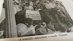 O cavalo Guarani e a reforma da previdência