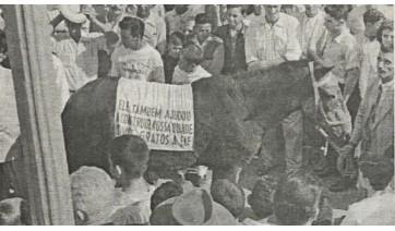 Crônicas de outrora: O cavalo Guarani e a reforma da previdência – Parte II