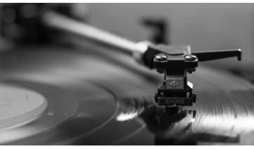 Música, Província e Mentes Bovinas...
