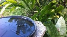 Prefeitura alerta sobre cuidados com período chuvoso e criadouros do Aedes aegypti