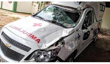 Cavalo na pista provoca acidente com ambulância na SP-294