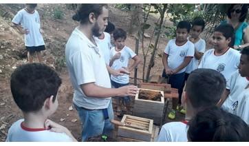 Programa Escola Sustentável leva estudantes a conhecer criação de abelhas