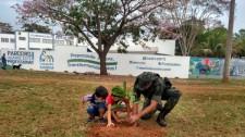 Plantio de árvores marca o Dia da Árvore e Dia do Policial Militar Ambiental