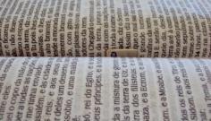 Irmã de presa tenta entrar em presídio com chip escondido em bíblia