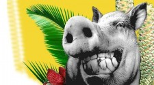 Espaço Alto das Palmeiras apresenta Feijoada do Cachaço