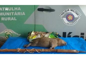 Capivara foi encontrada abatida e autores do crime ambiental identificados pela Polícia (Foto: Cedida/Polícia Ambiental).