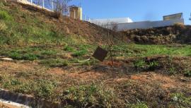 Demarcações ao fundo da creche municipal existente às margens da via férrea (Foto: Siga Mais).