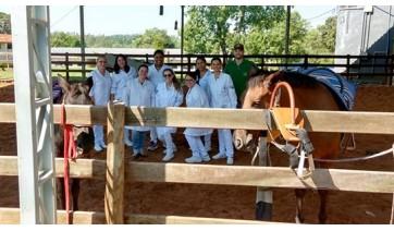 Enfermagem visita projeto de extensão em Equoterapia da UniFAI na Chácara da Apae