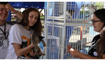 Durante a 1ª Feira de Adoção de Animais foram adotados quatro cachorros adultos, cinco filhotes e três gatos (Da Assessoria).