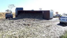 Caminhão bitrem carregado com 40 toneladas de cana-de-açúcar tomba na SP-294