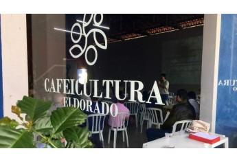 Café Robusta é apresentado como alternativa econômica para a Nova Alta Paulista