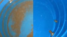 Limpeza em caixa d´água deve ocorrer a cada seis meses
