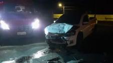 Três carros se envolvem em acidente com animal na pista na SP-294