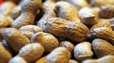 Parapuã deverá ter o maior silo de amendoins do Brasil