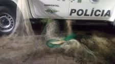 Polícia Ambiental autua três homens em R$ 2,1 mil por pescar na piracema em Adamantina