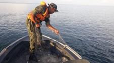 Polícia Militar Ambiental divulga término do período da Piracema e apresenta balanço