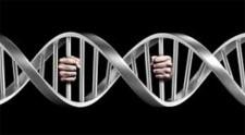 Banco de DNA vai reunir dados genéticos de criminosos