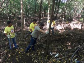 Equipe do Departamento de Controle de Vetores realiza buscas por escorpiões no Jardim Primavera (Foto: Siga Mais).