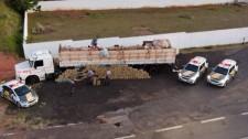 Homem é preso pela PM Rodoviária com carregamento de 2,7 toneladas de maconha em carreta