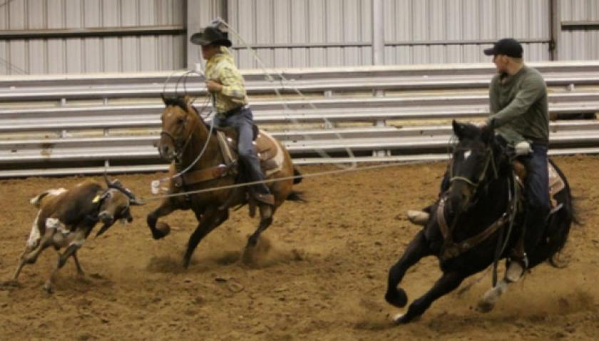 TAC traz proibições em provas de rodeio, mas mantém competições em touros