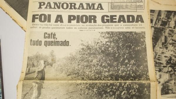 Imprensa, na época, noticiou os estragos e prejuízos da geada negra, ocorrida em 1975 (Reprodução).