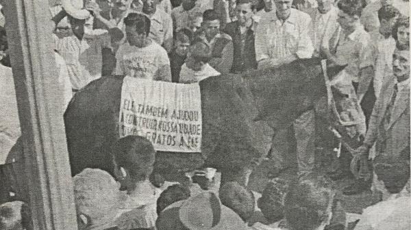 O cavalo Guarani, sendo aplaudido (Reprodução: Livro Jubileu de Ouro de Adamantina/Cândido Jorge de Lima).