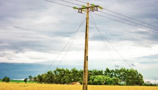 Produtor rural precisa atualizar cadastro para garantir benefícios nas despesas com energia elétrica nas propriedades rurais (Foto: Ilustração).
