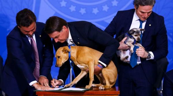 ?Quem não demonstra amor por um animal como um cão, por exemplo, não pode demonstrar amor, no meu entender, por quase nada nessa vida?, afirmou Bolsonaro (Foto: Marcelo Camargo/Agência Brasil).