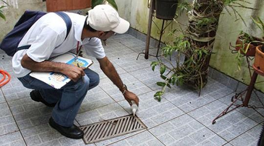 Agentes de controle de vetores fazem vistoria apenas no quintal das residências e promovem a aplicação de larvicidas somente em objetos como pratinhos de plantas e materiais inservíveis que estão no quintal (Ilustração).