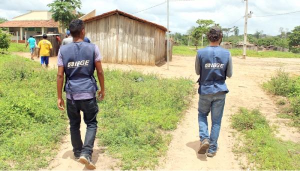 Dados foram coletados a campo, na região de Adamantina, pela equipe do IBGE (Foto: Ilustração).