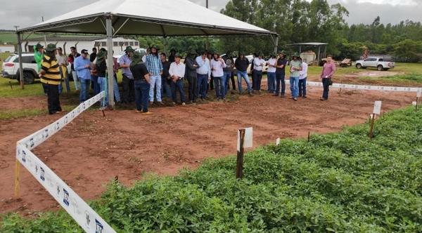 Atividades a campo foram apresentadas ao público (Reprodução).
