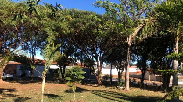 Área adotada pelo Interact Club de Adamantina (Divulgação/PMA).