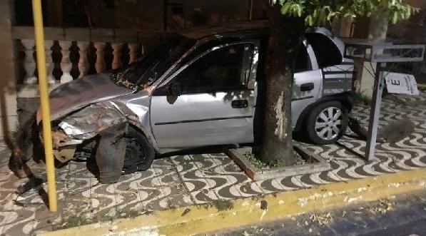 Carro ficou preso entre o muro do imóvel e uma árvore. Ninguém se feriu  (Reprodução: Portal Bueno).