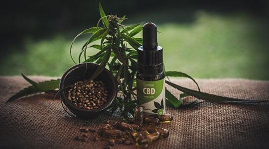 Comercialização ocorrerá exclusivamente em farmácias e drogarias sem manipulação (Reprodução/Pixabay).