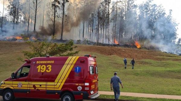 Bombeiros atuam no local onde houve a queda da aeronave (Divulgação/Corpo de Bombeiros).
