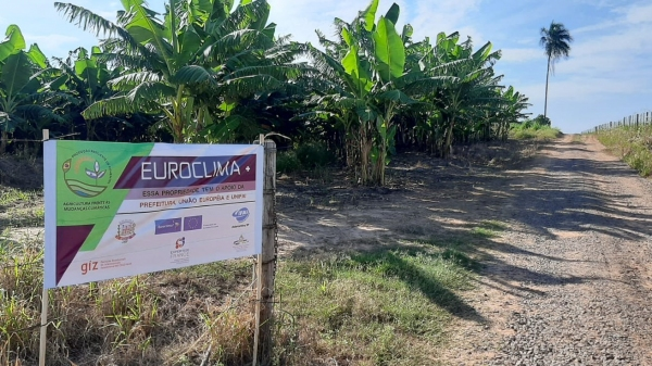 Profissionais atuam dando assistência técnica nas culturas de hortaliças e frutas, oferecendo orientação na utilização da compostagem, irrigação, análise de solo, análise do pH da água, entre outras atividades dentro das propriedades (Da Assessoria).