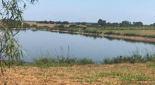 Lagoa de tratamento de esgotos de Monte Castelo, onde o feto foi encontrado na manhã desta segunda-feira (Reprodução/Site Jorge Zanoni).