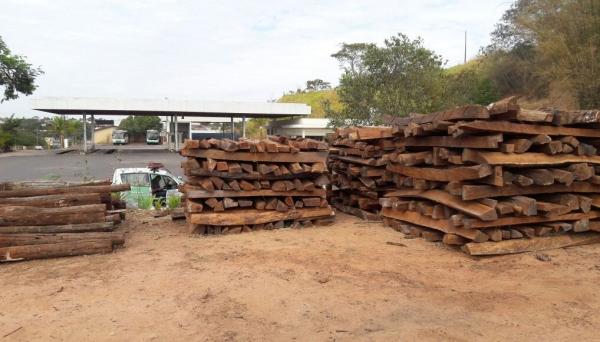 Polícia Ambiental localiza 568 lascas de madeira de árvore nativa Angico, depositadas irregularmente e com inconsistência na documentação, em Osvaldo Cruz (Foto: Cedida/Polícia Ambiental).