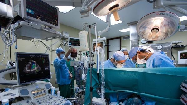 Para as cirurgias eletivas, os pacientes devem manter todos os cuidados e orientações relacionados a Covid-19. É fundamental estar bem de saúde no momento dos procedimentos (Ilustração. Imagem de Ahmad Ardity por Pixabay).