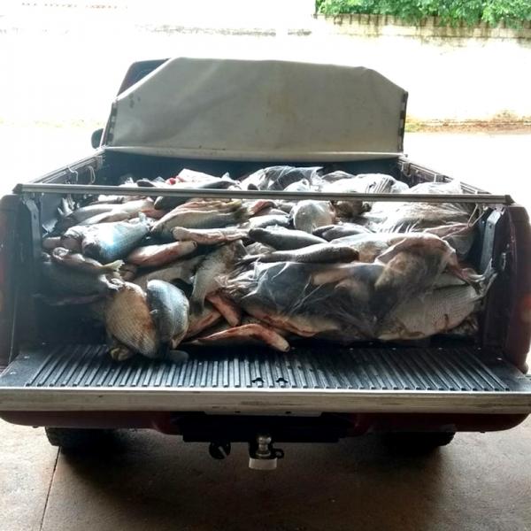 Pescados apreendidos pela Polícia Ambiental foram doados a entidades assistenciais de Presidente Epitácio (Foto: Cedida/Polícia Ambiental).
