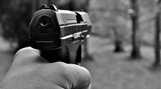 A maioria dos senadores argumentou que a alteração das regras para o acesso às armas por meio de decreto era inconstitucional e deveria ser feita por projeto de lei (Foto: Pixabay).