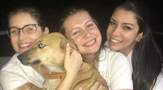 A cadela Paçoca com colaboradas da equipe Proeste Adamantina, um dos quatro animais adotados na empresa local (Divulgação).