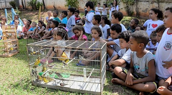 Crianças participam da soltura de pássaros em iniciativa de educação ambiental que envolve o Poder Judiciário, Ministério Público, entidades, escolas e Polícia Militar Ambiental (Foto: Milton Ura).